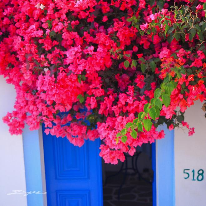希臘。愛琴海【我..迷失在伊亞巷弄裡..】