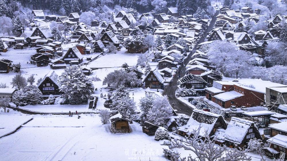 【美好行】冬天合掌村點燈*宿泊合掌造民宿之旅